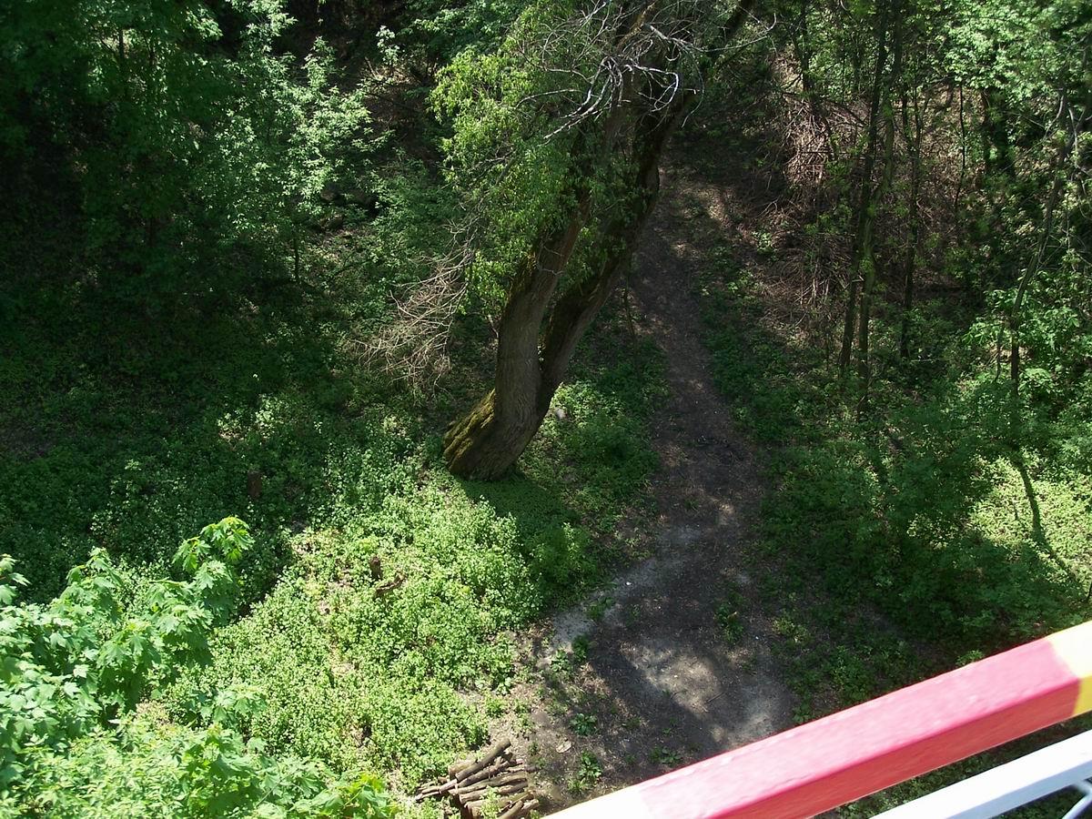 Вигляд з мосту