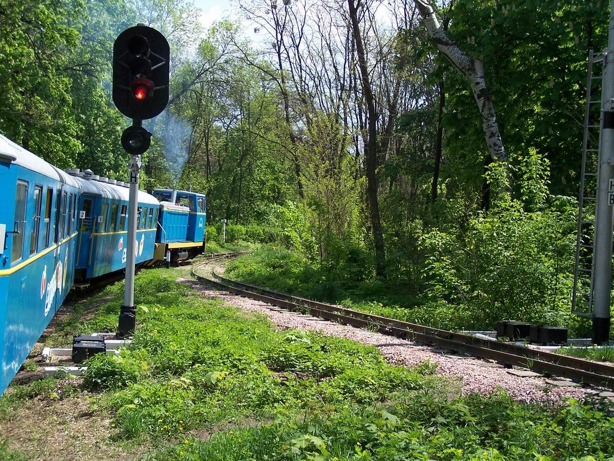 Поїзд на підході до ст. Яблунька
