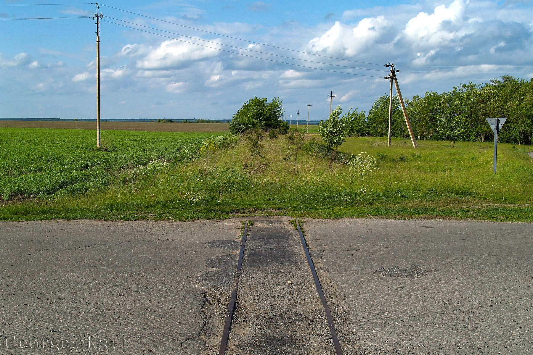 Розібрана вузькоколійна гілка Поташ - Червоний Кут, переїзд на трасі Т2405 між селами Буки та Червоний Кут, Черкаська область