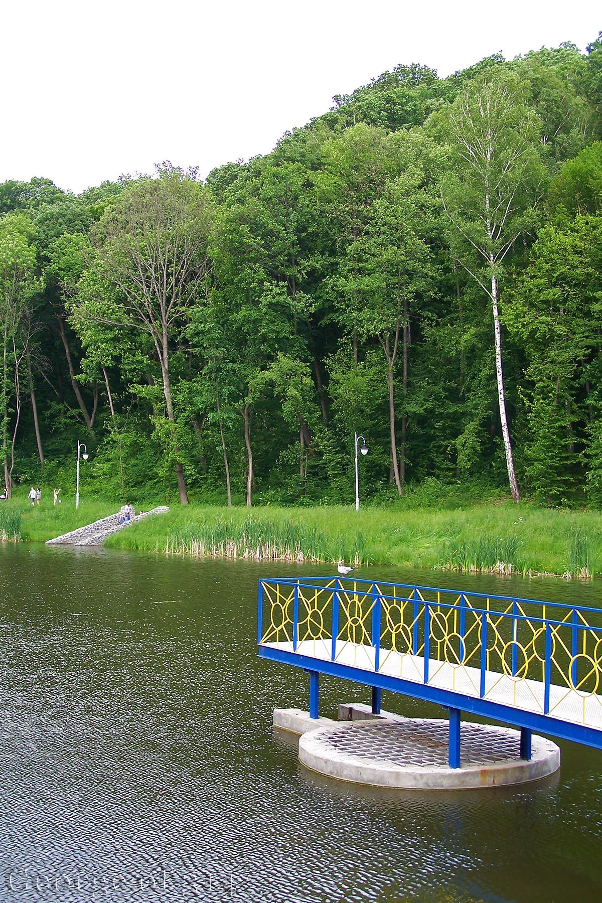Став у парку Феофанія, Київ