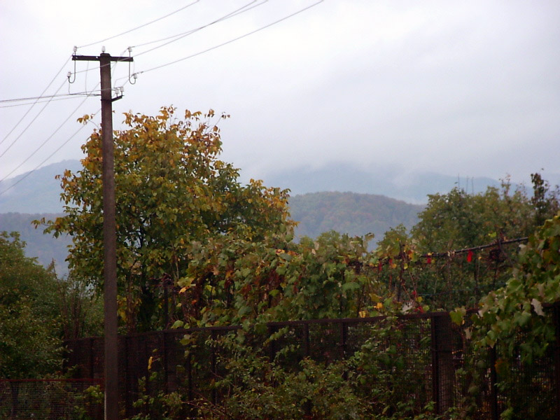 Гора Товста в тумані