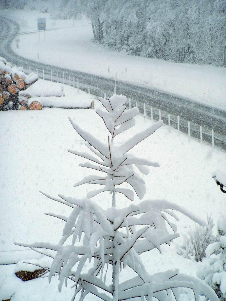 Зимова казка, м. Капрун, Австрія