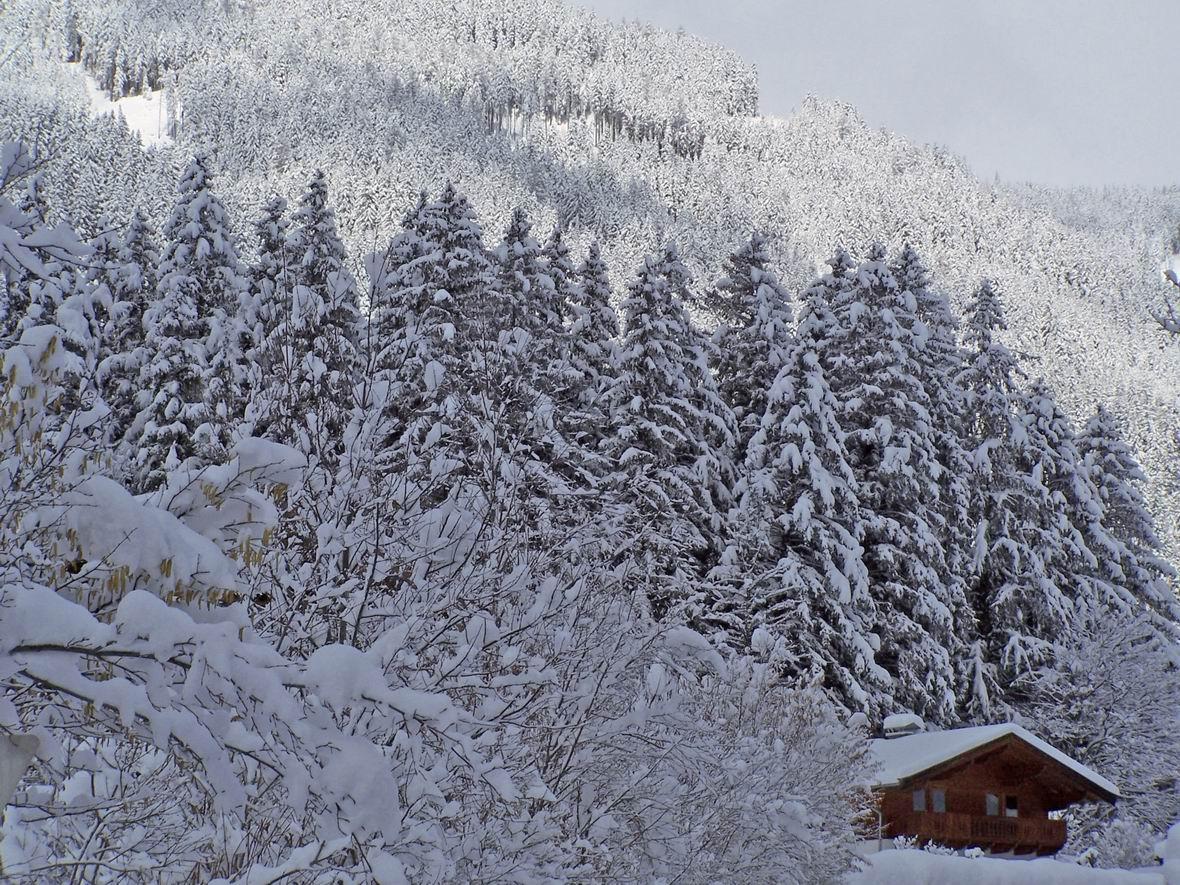 С. Кріммль, Австрія